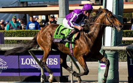 Image for Breeders' Cup