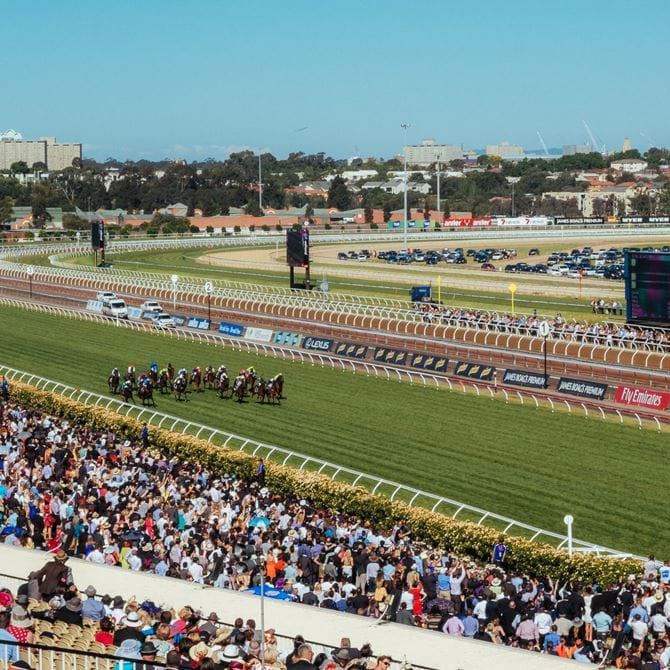Image for Melbourne Cup